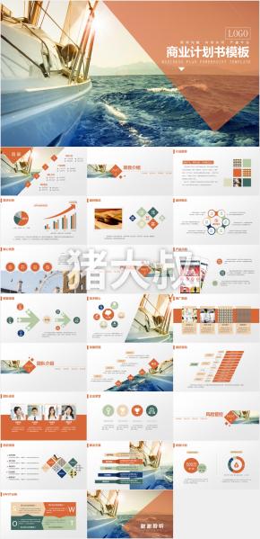 |LOGO框架完整内容实用严谨专商业计划书模板